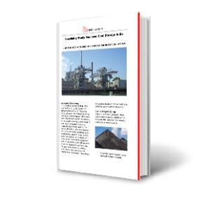 Feasibility Study Silo Storage India